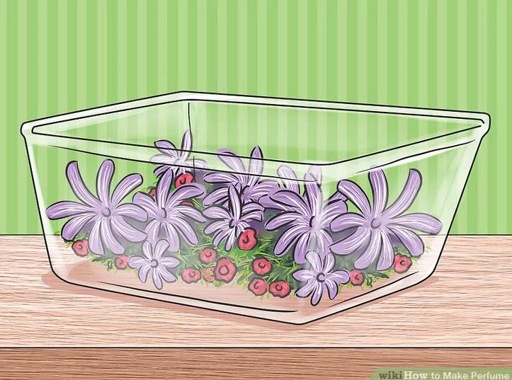 آموزش ساخت عطر-گلها، برگها یا ریشههای معطری را تهیه کنید که بوی آنها برای شما جذاب هستند