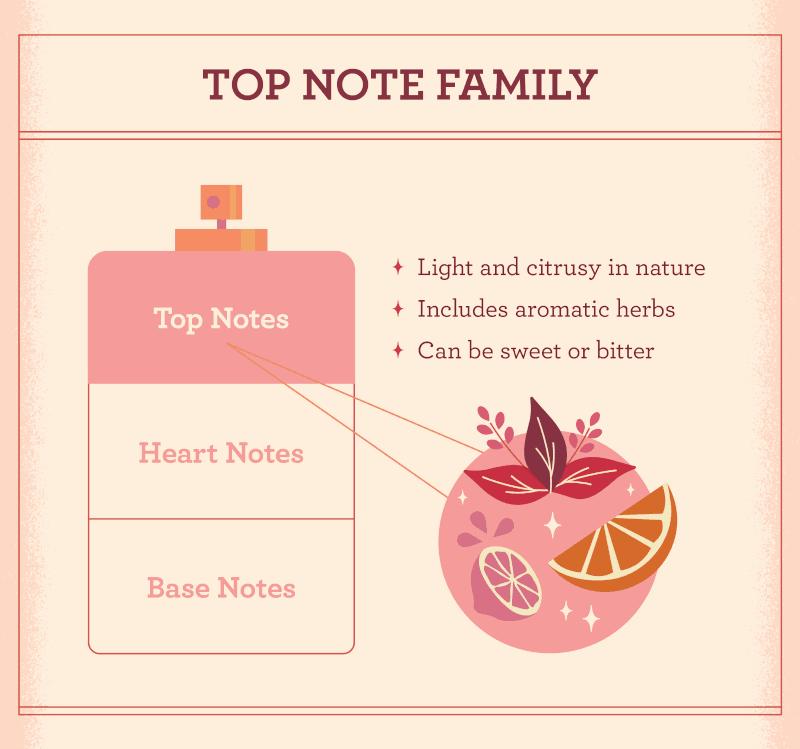 چگونه نت عطر را تشخیص دهیم-نت های عطر