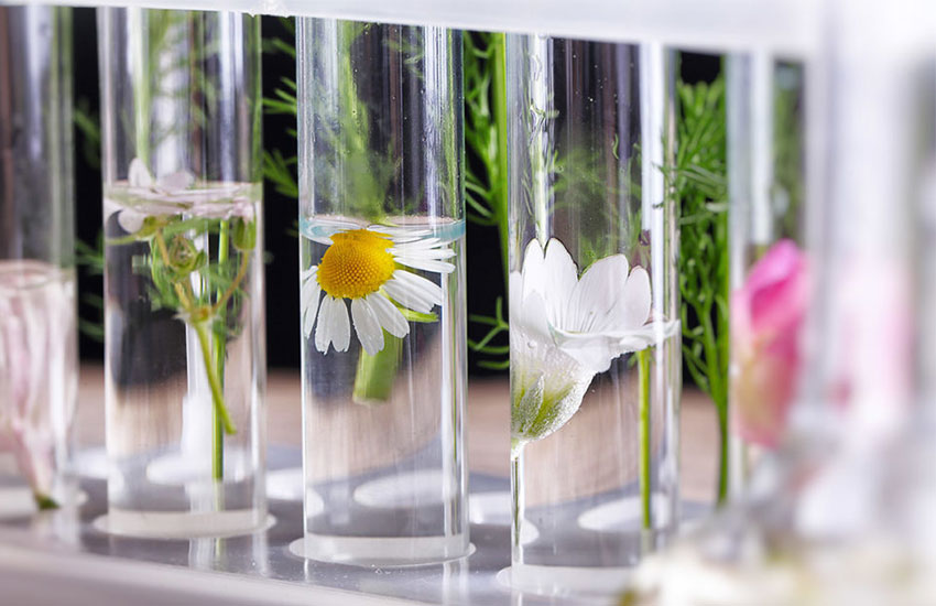 انواع عطر- ادوکلن