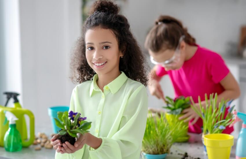 لیست هدیه روز دختر - گل و گیاهان خانگی